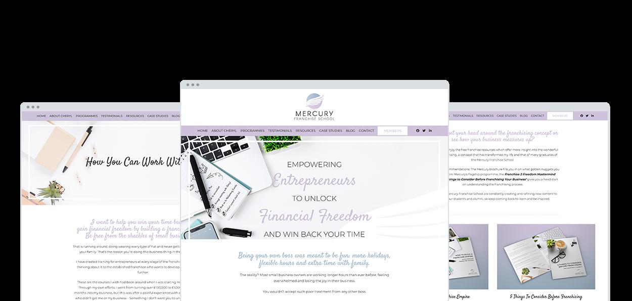 Mercury Franchise School Website Design and Development